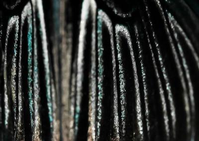 9 Papilio memnon (male)