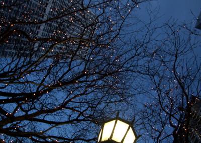 Chicago. Light